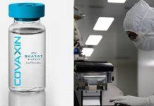 Covaccine will launch in February