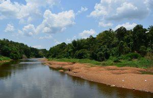 Kadalundi River in Anakkayam pic (c) ; Wikipedia