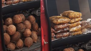 coconut and snacks sale in panampilly nagar