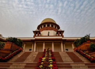 Can't Cut Trees In Name Of Lord Krishna say SC to UP government
