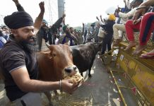 Farmers' protest at Ghazipur border