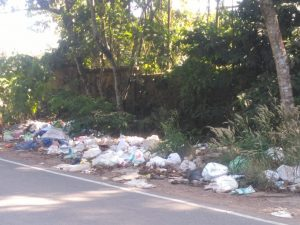 waste in front of the plant