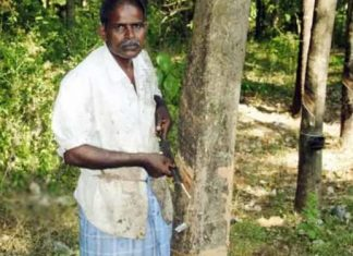 Kerala Xmas New Year Bumper lottery winner Rajan is still a tapping worker