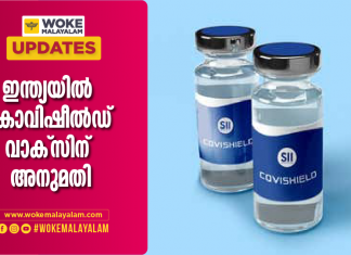 Oxford-AstraZeneca Covid vaccine gets approved in India