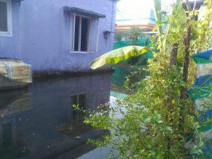 flooded home at Tsunami colony, Narakkal,