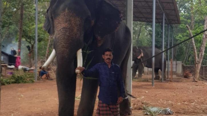 Kollam native Shaji arrested in Mumbai for elephant trafficking
