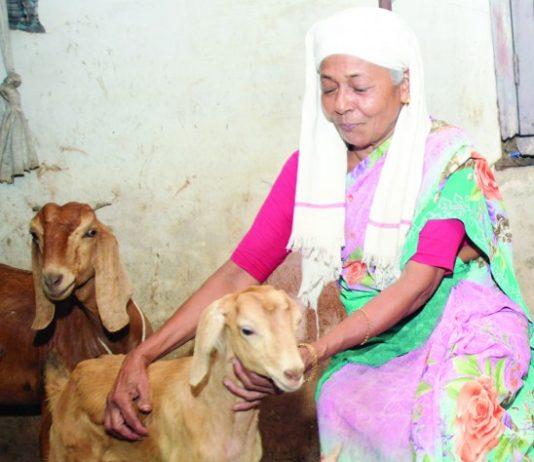 subaidha donates money to covid relief fund