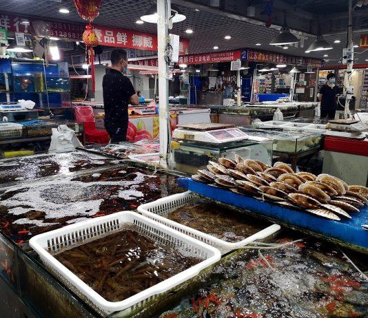 wuhan fish market